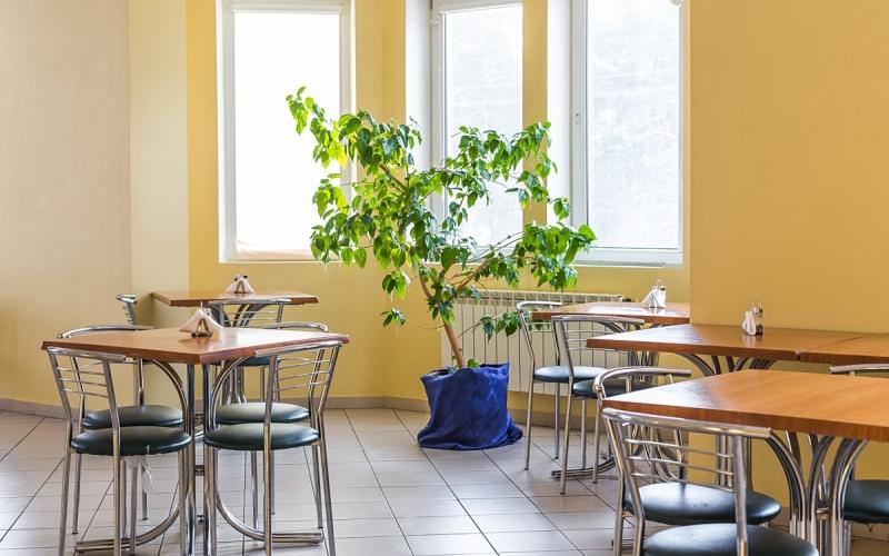 кафе клиники Рекавери